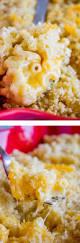 best 25 best macaroni and cheese ideas on pinterest velveeta