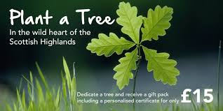In Memory Of Gifts Personalised Dedicate Trees With A Personalised Certificate