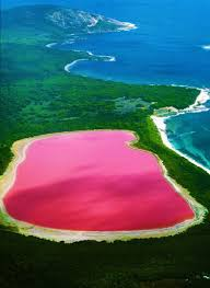 Pink Lake A Beautiful Natural Water Source Most Amazing Places
