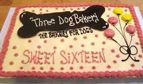 birthday cakes for dogs three dog bakery louisville