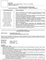 resume text format international sales cv format international sales resume sle
