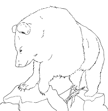 grizzly bear coloring grizzly bear free printable coloring