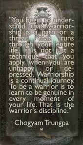 49 best way of the warrior images on pinterest warriors martial