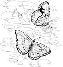 nature coloring pages with butterflies coloringstar
