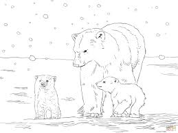 polar bear mother with two cubs coloring page free printable