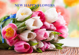 flowers wholesale flowers wholesale supply florist in delhi india send flowers