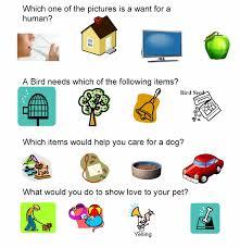 pet care u0026 safety lesson plans homeschool pets pinterest pet