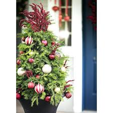 front porch trees mini tree decorated with ornaments and