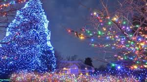 when does the lights at the toledo zoo start lights before christmas display at the toledo ohio zoo is back and