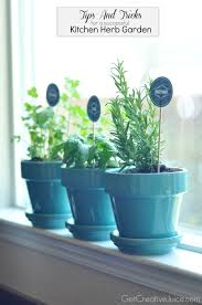 Kitchen Garden Window Ideas by Tips And Tricks To Maintaining An Indoor Kitchen Herb Garden