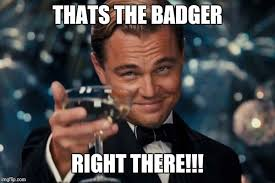 Badger Memes - leonardo dicaprio cheers meme imgflip
