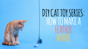 What Is A Feather Bed Diy Cat Toys How To Make A Feather Wand Youtube
