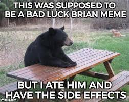 Bad Luck Brian Meme Maker - bad luck bear brian imgflip