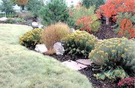 zavala landscape and garden design san antonio the garden