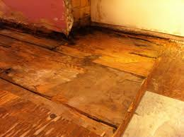 Laminate Flooring And Water Damage Bathroom Water Damage And Floor Rot Temporary Fix Mojobudgie Com