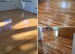 dog and hardwood floors black dog flooring llc hardwood floors hardwood flooring