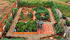 home vegetable garden ideas unbelievable goodshomedesign design 10
