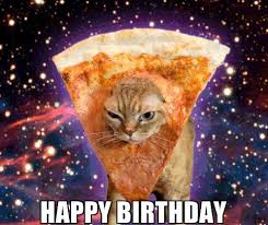 Cat Birthday Memes - latest happy birthday cat meme with funny images wishes