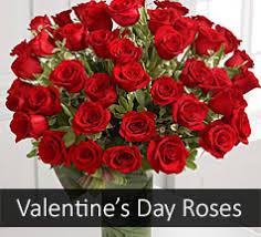 s day roses valentines roses roses valentines day roses
