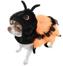 Spider Halloween Costume Dogs U0026m Selling Spooky Halloween Costumes Dogs Prices