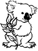 plush koala coloring pages free printable koala coloring pages