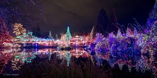 Vandusen Botanical Garden Lights Adventures Festival Of Lights At Vandusen Gardens
