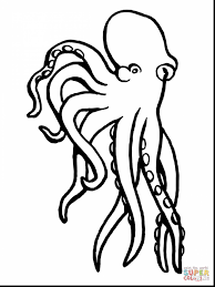 amazing octopus coloring pages printable with octopus coloring