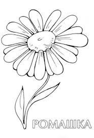 daisy flower tattoo sample tattoos book