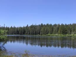 Lake Almanor Thermal Curtain Haymeadows Jpg