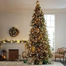 the brown christmas tree member s 12 frasier fir christmas tree sam s club