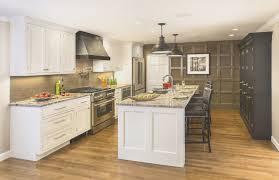 kitchen amazing kitchen cabinet solutions luxury home design