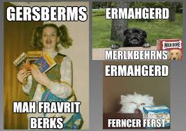 Ermagerd Meme - ermahgerd the 12 best memes of 2012