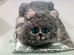 Kitty Litter Halloween Cake by Coolest Homemade Cat Kitty Cakes
