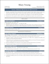 financial assistant resume resume for your job application