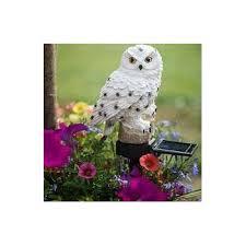 The Barn Owl Carol Stream Amazon Com Owl Led Garden Solar Light Garden U0026 Outdoor