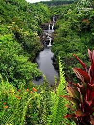 Kona Botanical Gardens 579 Best Gardens Of The World Images On Pinterest Botanical