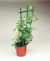 ama grower essentials plant support trellis