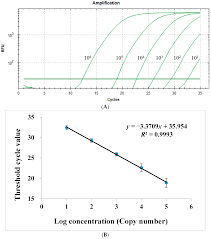 ijms free full text a quantitative real time pcr based
