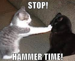 Hammer Time Meme - stop furlough time crow202 site thoughts from dances with crows