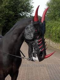 Funny Halloween Animal Costumes 10 Horse Costumes Images Horses Animal