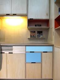 best plywood for cabinets 25 best plywood cabinets ideas on pinterest kitchen all quality of