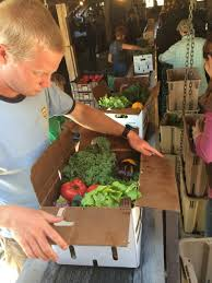 fruit delivery chicago angelic organics a community supported agriculture farm feeding