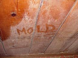 Mould Bedroom Ceiling Damp And Mould U2014 Ian Perks Estate Agent