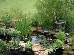 backyard landscape software u2014 home landscapings backyard