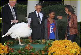 president obama pardon thanksgiving turkeys photo 2762115