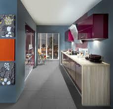 couleur aubergine cuisine cuisine avec des façades de couleur aubergine colorées adoptées