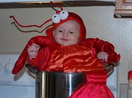 Lobster Halloween Costume Halloween Baby Contest Cute Lobster