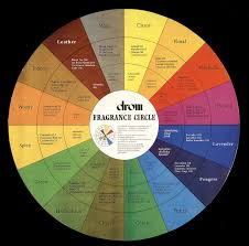 Natural Scent Drom Fragrance Wheel Big Aromatherapy For The Massage And Spa