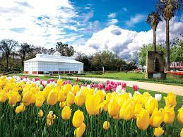 Geelong Botanic Gardens by Parks And Gardens Nature And Wildlife Goldfields Victoria
