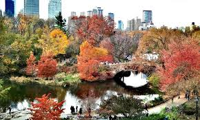walking pictures fall foliage central park